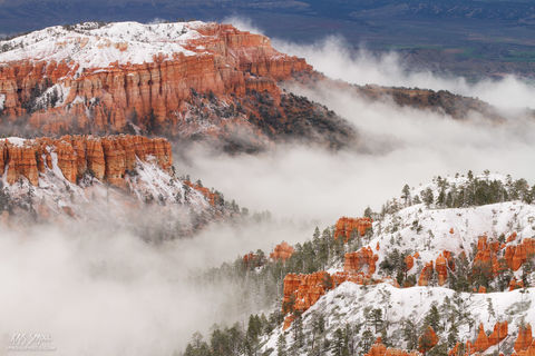 Bryce Canyon Snow and Fog