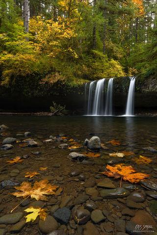 Butte Creek Autumn