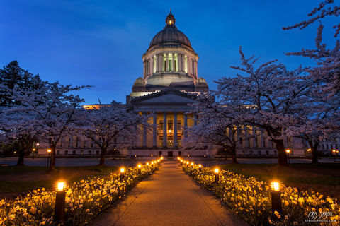 Capitol Pathway Twilight