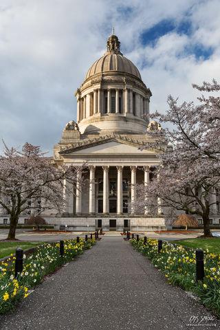 Capitol Spring Vertical