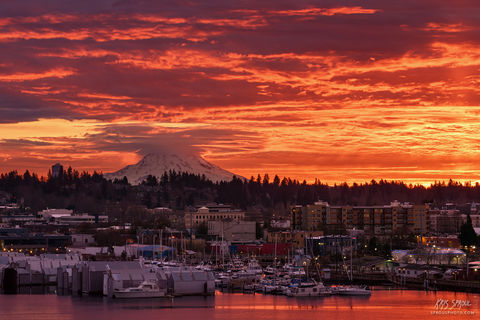 Fire Over Olympia