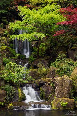 Heavenly Falls in Spring