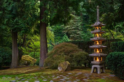 Pagoda Lantern Evening