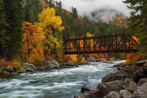 Pipeline Bridge in Autumn