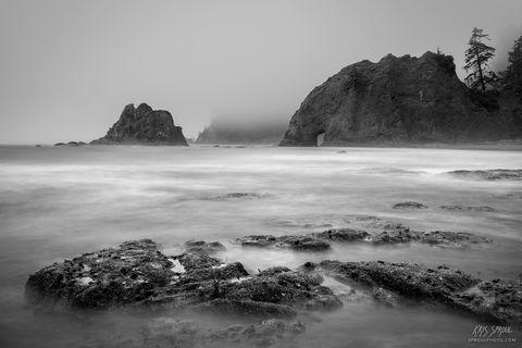 Rialto Beach Fog