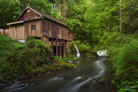 Spring at the Grist Mill