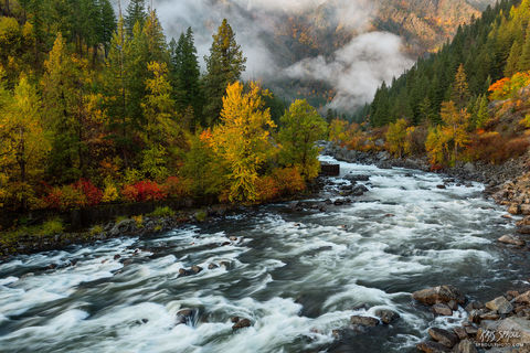 Wenatchee River Fall Color